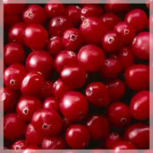 Cranberry Ukraine