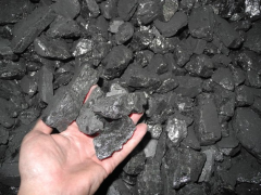 Coal, concentrate coal