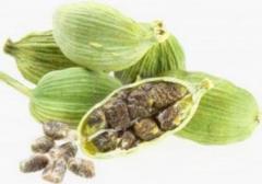 Cardamom, essential oil