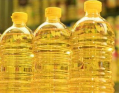 Bottled sunflower oil