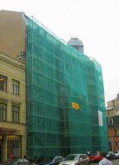 Wire mesh guard for bricklayer's scaffold of