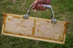 """Beekeeping frame """"Rue"""","""