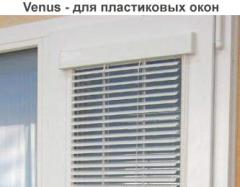 Blinds - Venus