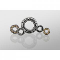 Bearing 102506.CRF-I