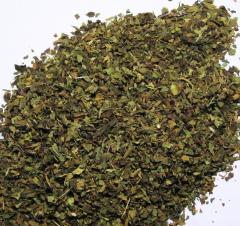 Зелень, салаты, пряности