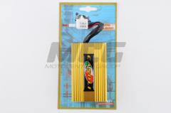 Switch tuning of Honda Dio AF18/27 Casoli golden