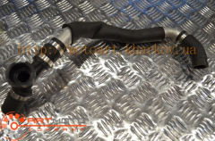 Radiator branch pipe