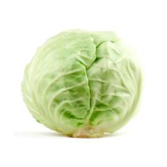 Cabbage white kg