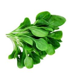 Spinach piece bunch