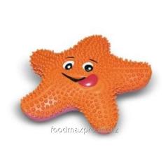 Starfish of 23 cm of 1512 Topsi of piece