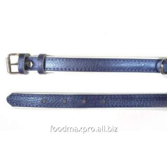 Collar for dogs of Topsi of Fiolet / the edging of