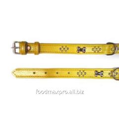 Collar for dogs of Topsi Zhelt/kost/ukr