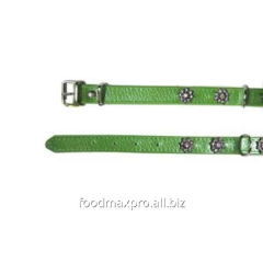 Collar for dogs of Topsi green / flowers of