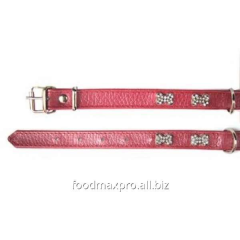 Collar for dogs of Topsi of Krasn/kostoch of