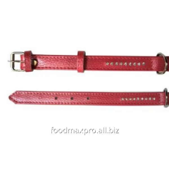 Collar for dogs of Topsi of Krasn / pastes of