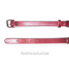Collar for dogs of Topsi Red / the edging of