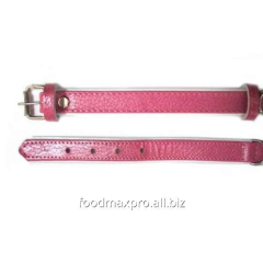 Collar for dogs of Topsi Rozov / the edging of