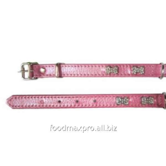 Collar for dogs of Topsi of Rozov/kostoch of