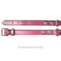 Collar for dogs of Topsi Rozov/serdechk