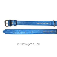 Collar for dogs of Topsi Blue / pastes of 420*20mm