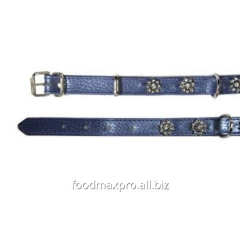 Collar for dogs of Topsi fiolet / flowers of