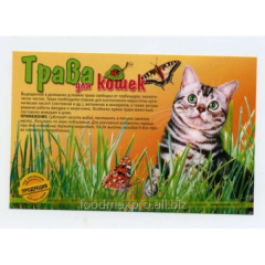Grass for cats the Nature of fast-growing 70 g
