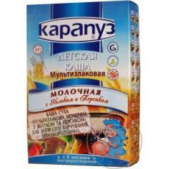Porridge Peanut Multizlakovaya dairy apple/peach