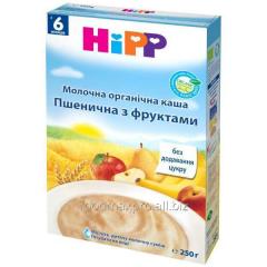 Porridge wheaten Hipp dairy with fruit organichesk