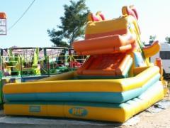 Mechanical trampoline Duck