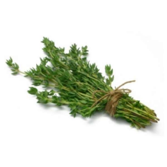 Thyme Israel 50 g