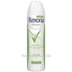 Aloe Rexona deodorant Vera antiperspirant of 150