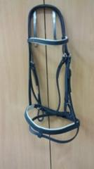 Bridle sports LINED code 9884