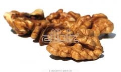 Kernels of nuts to buy low prices, wholesale, from