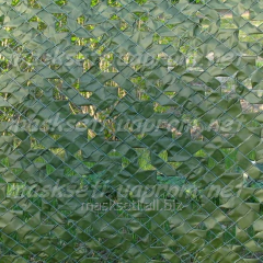 Fence dark green, decorative on the basis of a