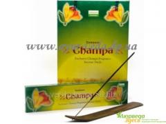 Aroma Champa Darshan, Champa Darshan rectangular