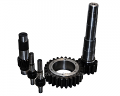 Pinion shaft, hollow shafts, gear wheels of