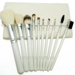Natural set of brushes of 10 pieces