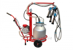 Bezyozka-1 milking machine