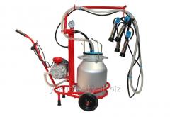 Bezyozka-1 milking machine