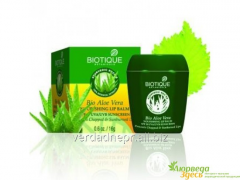 Balm for Biot Aloye's lips Vera with a