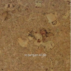 Pith floor of MJO ODYSSEUS