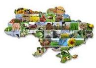 Средства защиты растений. Химические средства