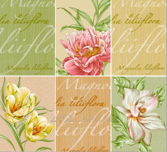 Wall-paper moisture resistant / Dnipropetrovsk /