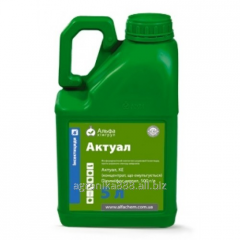 Insecticide Aktual from Alfakhimgroup