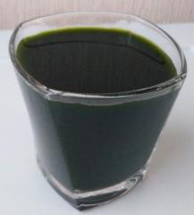 Tanks for honey Chlorella