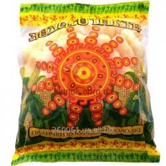 Corn sticks Gold of Inca