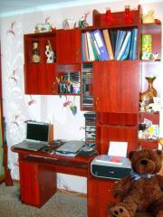 Компьютерный стол стенка