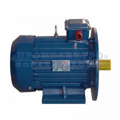 Электродвигатель АИР100L2 - 5,5кВт 3000 об/мин