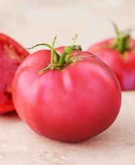 Pink of the lady of f1/pink girl f1 - a tomato