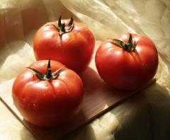 Tsarin f1/tsarine f1 - an indeterminantny tomato,